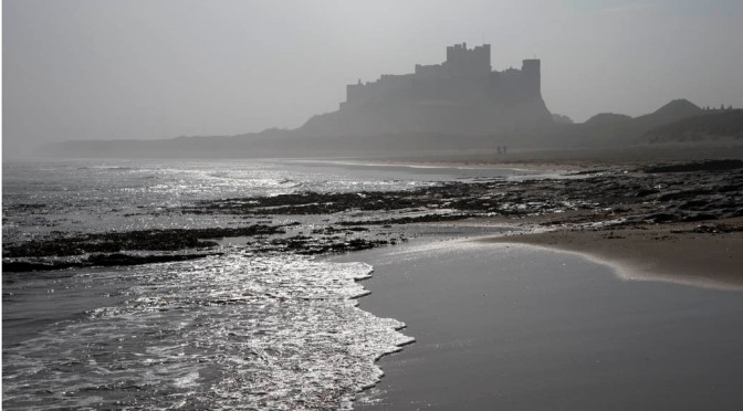 Northumberland Coast is Where The Wild Things Are