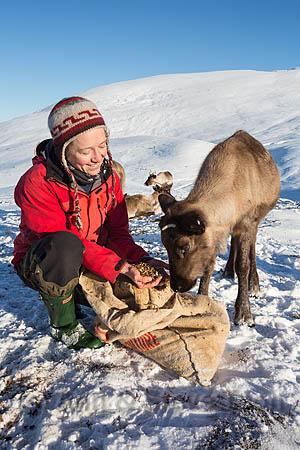 BMI10  Andi Probert, reindeer herder