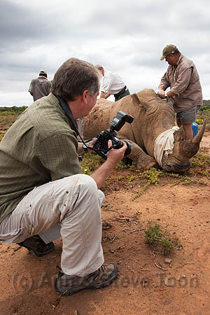 BOO56 Steve photographing rhino surgery